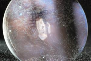 Грибки (fungus) в объективах / на линзах