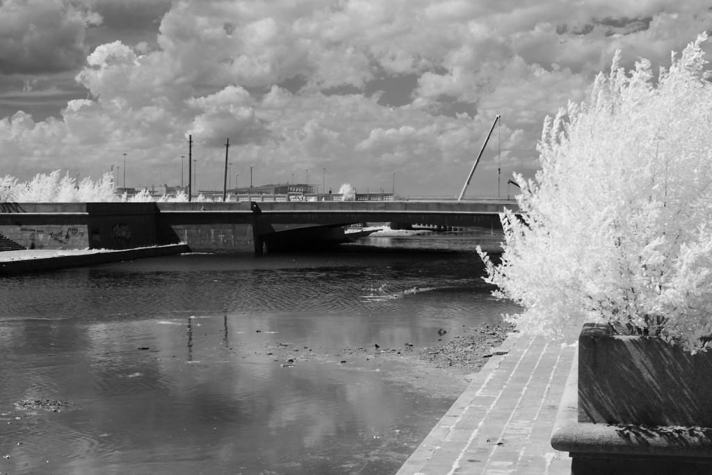 Инфракрасная фотография - практика, примеры. Ссылка на то, как модифицировать камеру