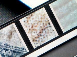 Микроскопы и фотография