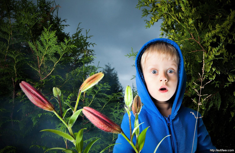 Обучение детской фотосъемке
