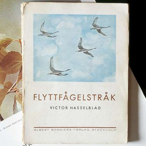 Hasselblad - история компании