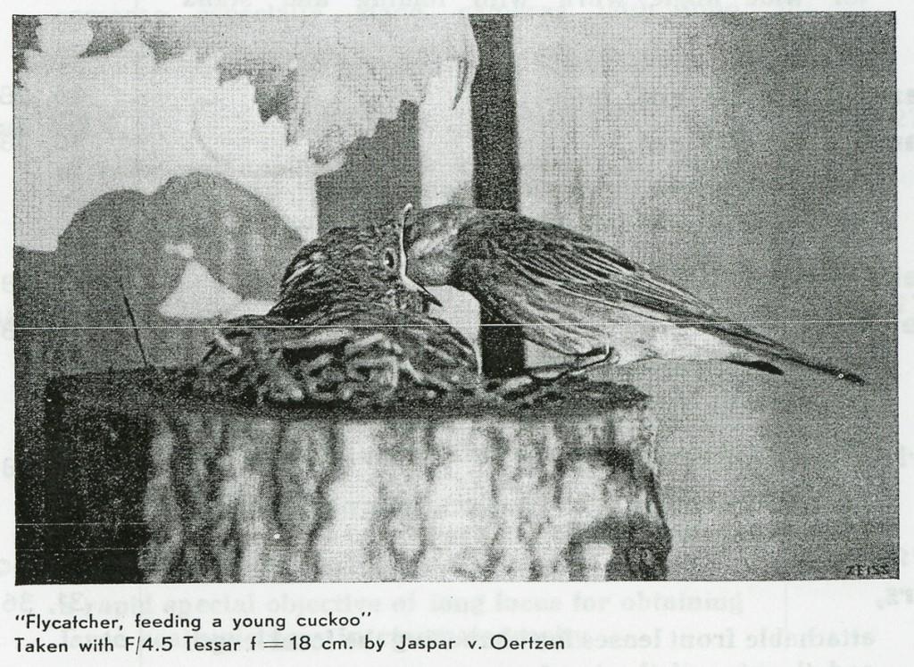 Добавил информацию про старые объективы Zeiss: Dagor, Protar