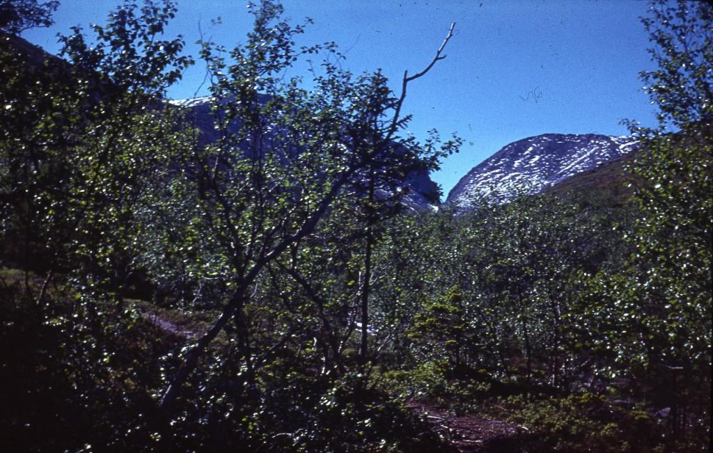 Старая плёночная шкальная камера -  Voigtländer Vito B