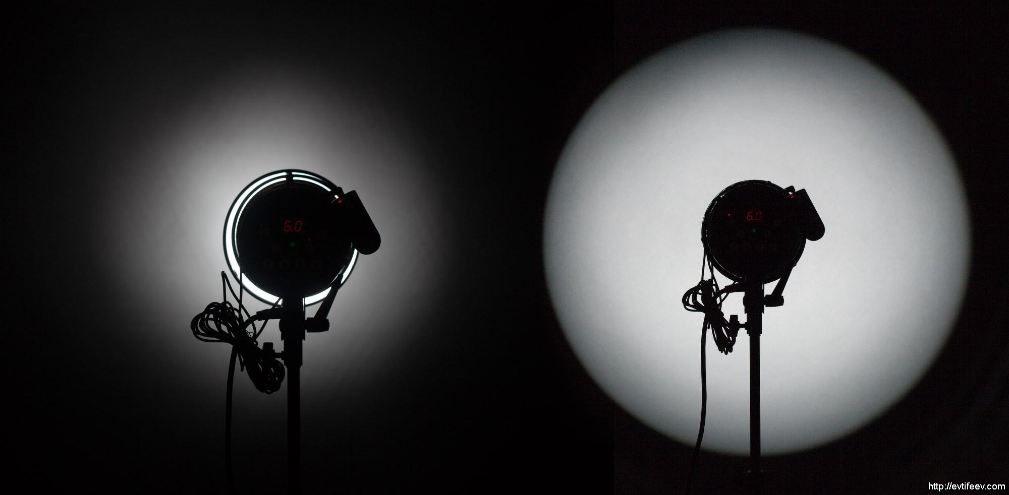 Кактус из бисера своими руками: фото мастер класс