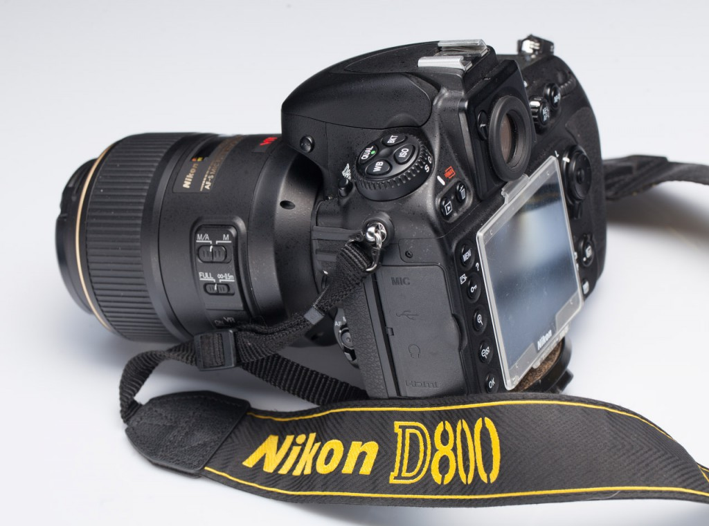 Canon 5D mark II vs Nikon D800