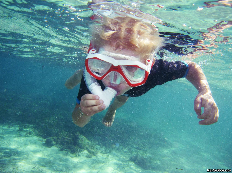 Самодельный фотобокс для подводной съемки - МозгоЧины 44