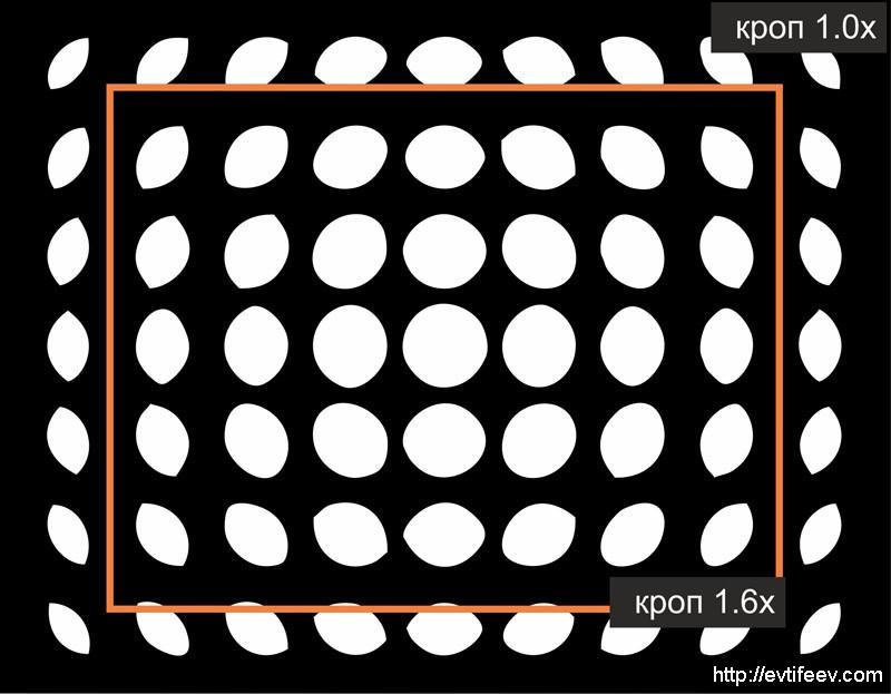 Обзор объектива Lensbaby Twist60 60/2.5