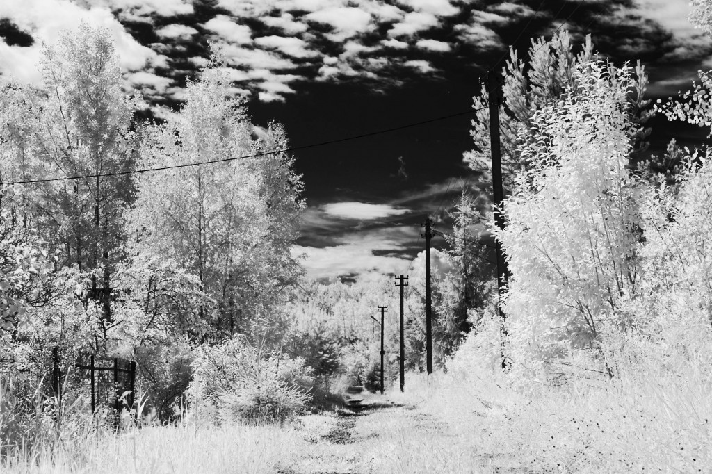 Инфракрасная фотосъемка