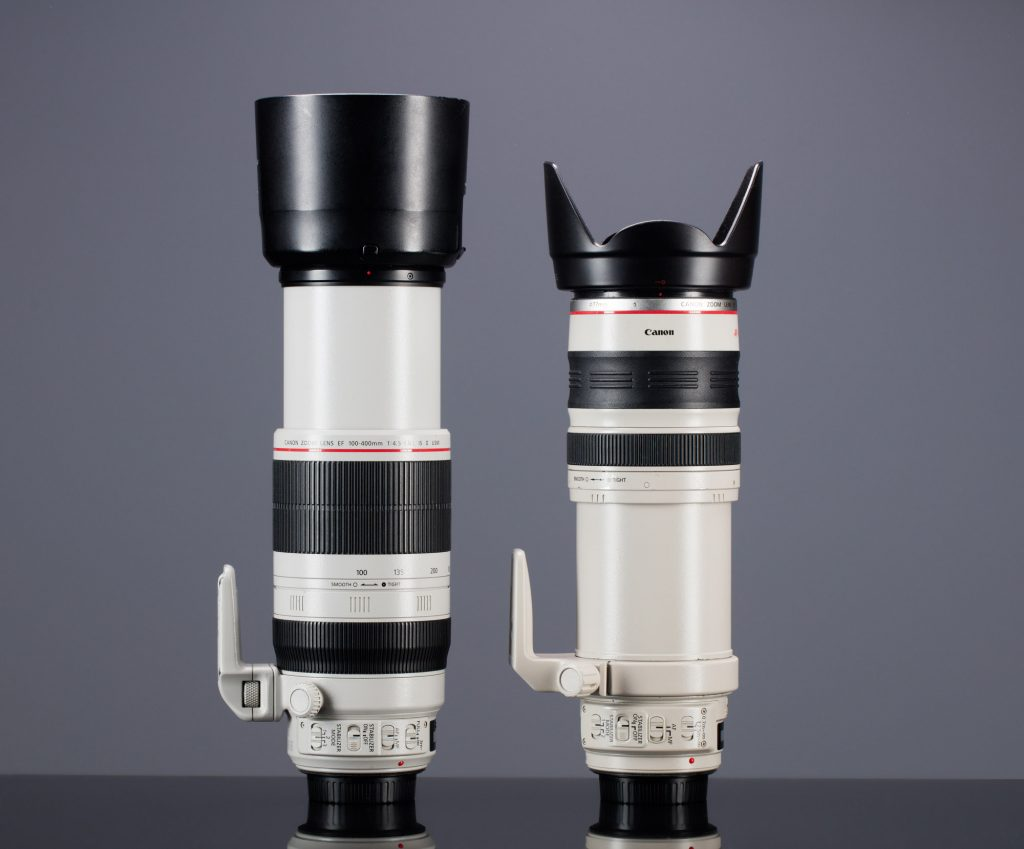 Canon EF 28-300mm f/3.5-5.6L IS USM vs Canon EF 100-400mm f/4.5-5.6L IS II USM