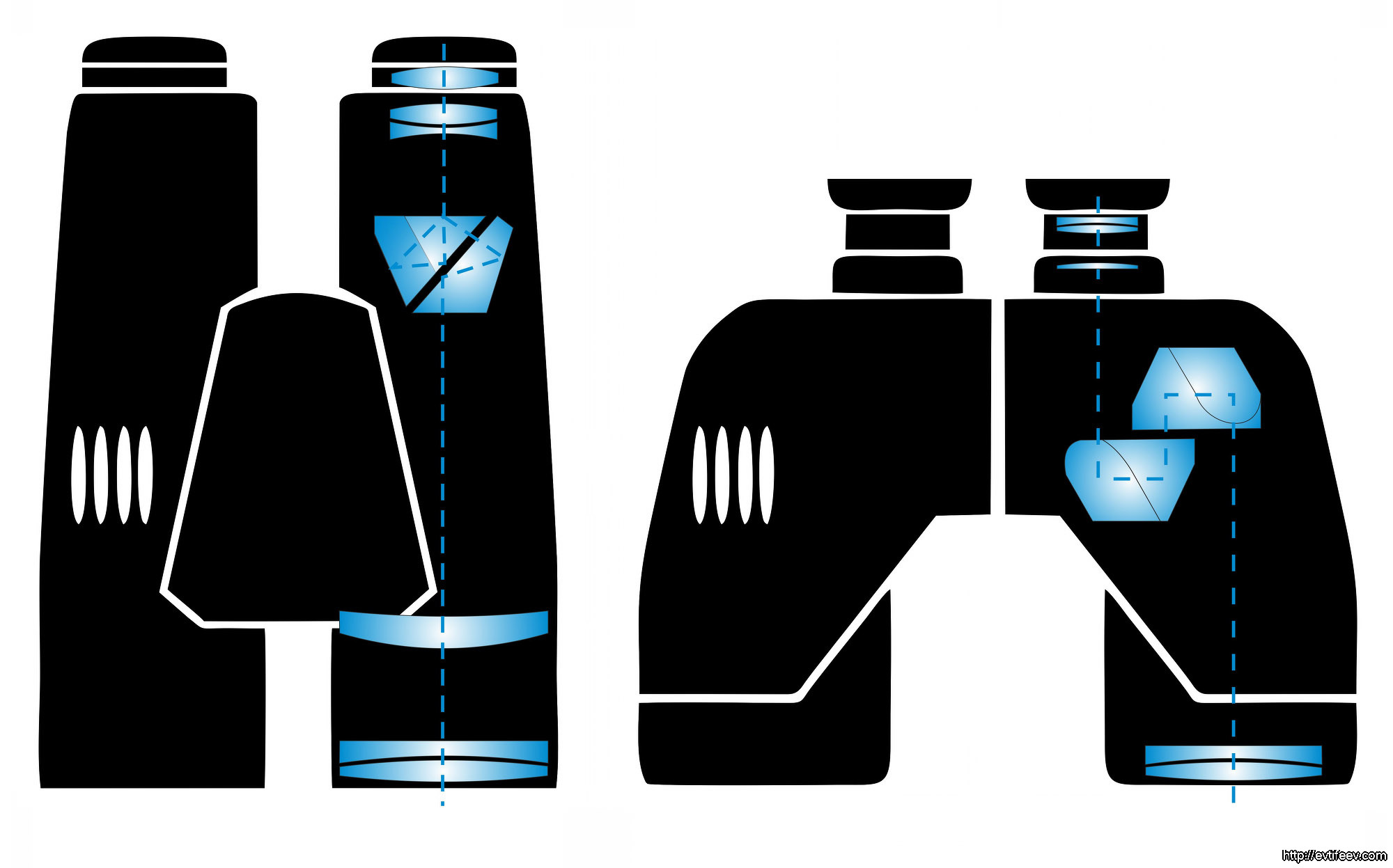 Обзор и тест бинокля STEINER SKYHAWK 3.0 8x42