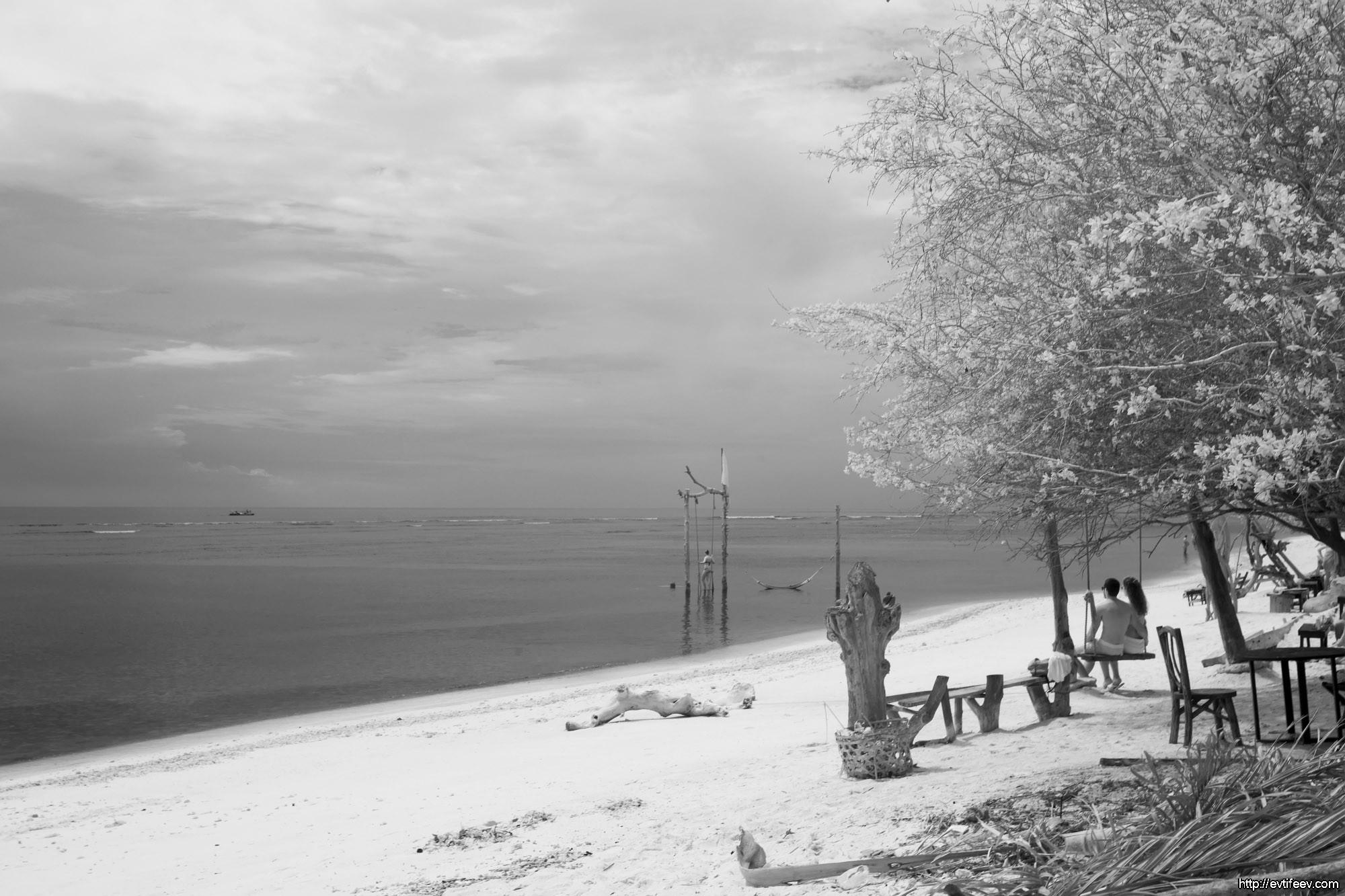 Инфракрасная фотография ч.3 (примеры снимков: Индонезия, Германия, Турция)